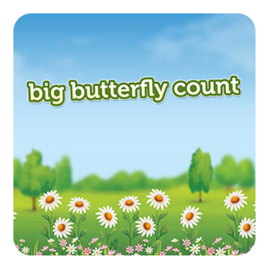 Big Butterfly Count (19th July to 11th August) with Butterfly Conservation on 19th July, 2019.