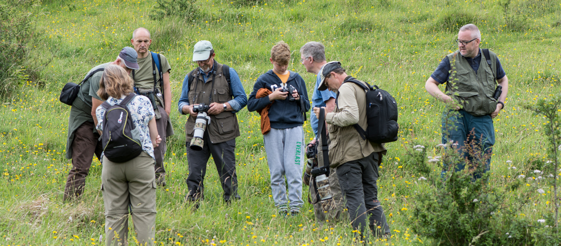 The search for the Large Blue in Gloucestershire. © 2020 Steven Cheshire.