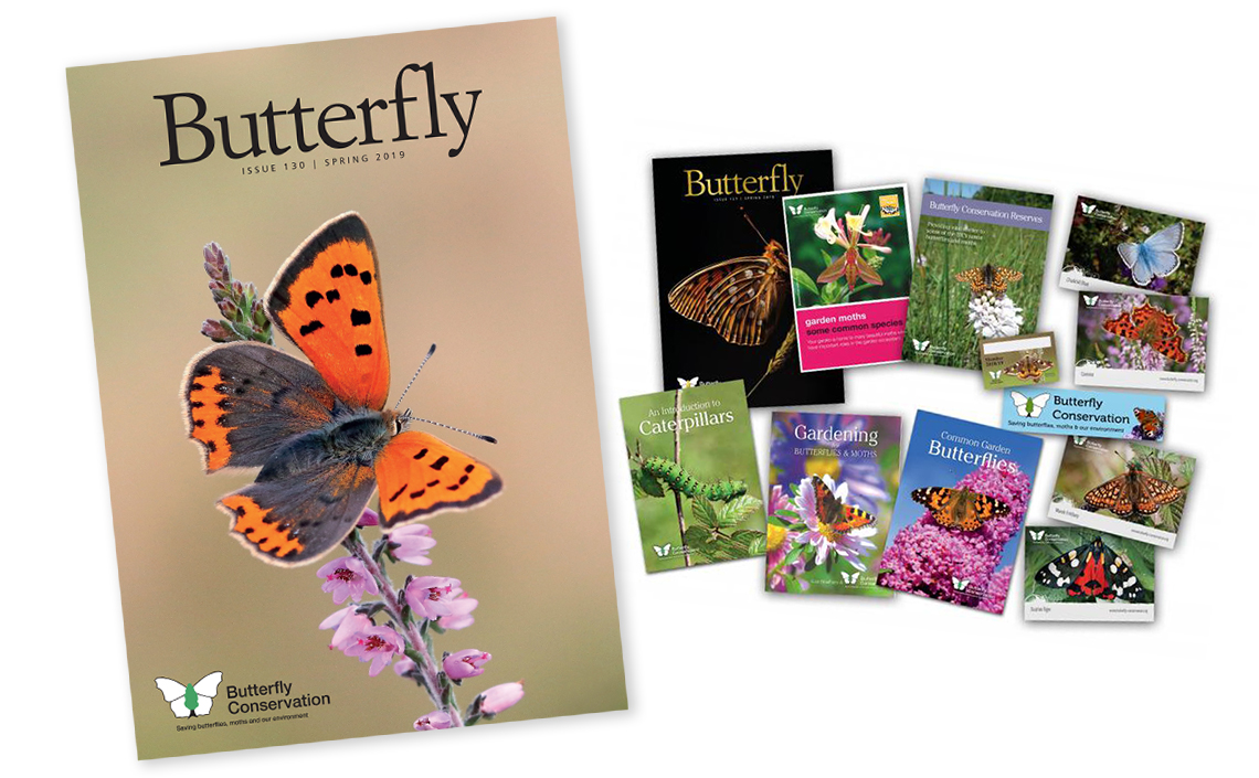 Join Butterfly Conservation Today