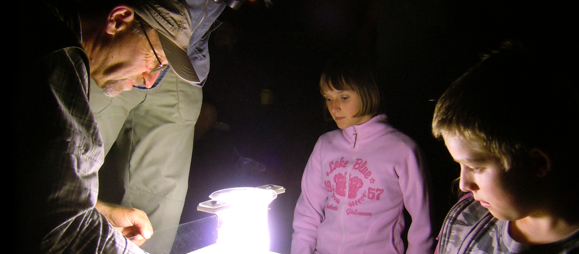 Moth Trapping at Baddesley Common. © 2020 Steven Cheshire.