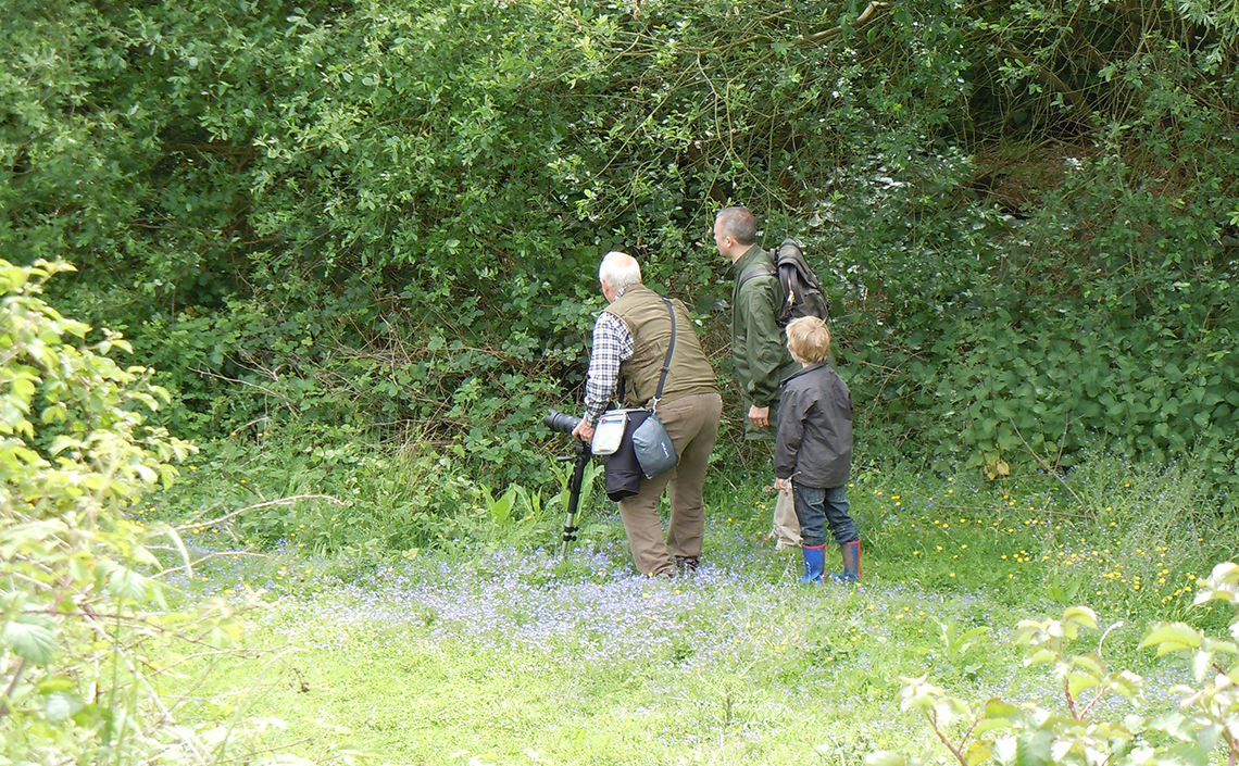 Three generations hunting for butterflies at Ryton Wood Meadows in 2011 - © 2011-2019 Steven Cheshire